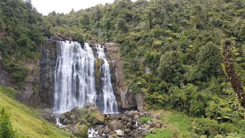 Monday Excursion: Natural Bridge, Piripiri Cave, Marokopa Falls